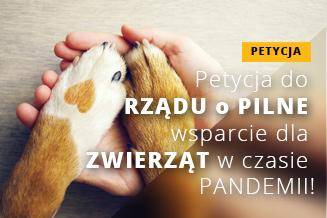 Petycja Wsparcie dla zwierząt